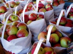apples in bags at farmers market