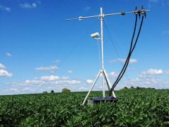 field sensor