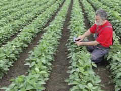 worker in field