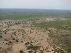 aerial photo showing deforestation