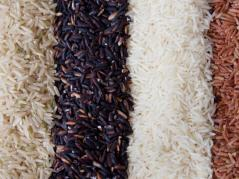 rice in colored bands