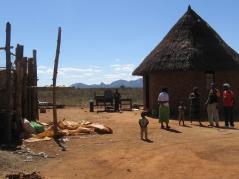 Family farm in Zimbabwe