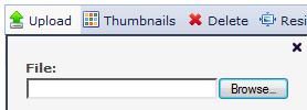 File upload button