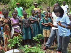 Sierra Leone school children watch a demonstration