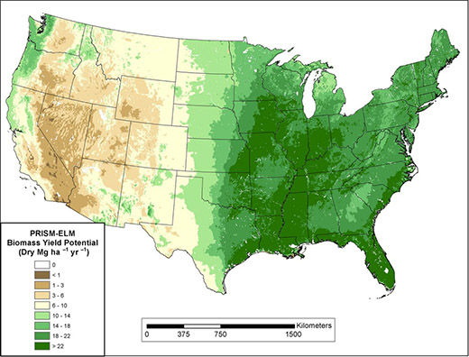 Map showing suitable regions for herbaceous feedstock production