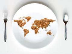world map in grain