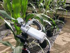 Measuring water use efficiency