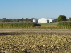 field at Orr Center